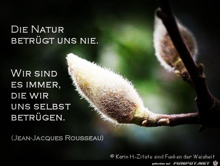 die natur betruegt uns nie