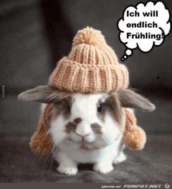 ich will endlich Frühling...
