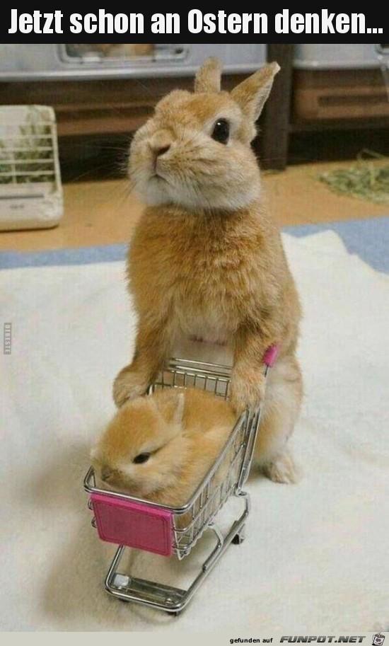 jetzt schon an Ostern denken..
