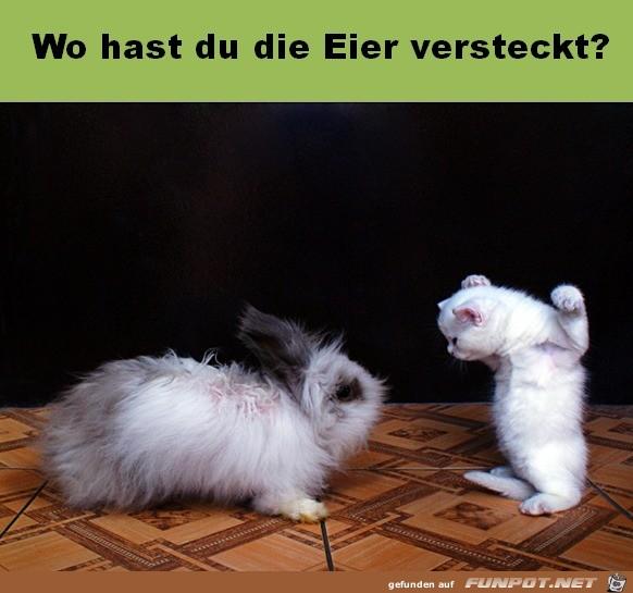 Eier-versteckt.jpg auf www.funpot.net