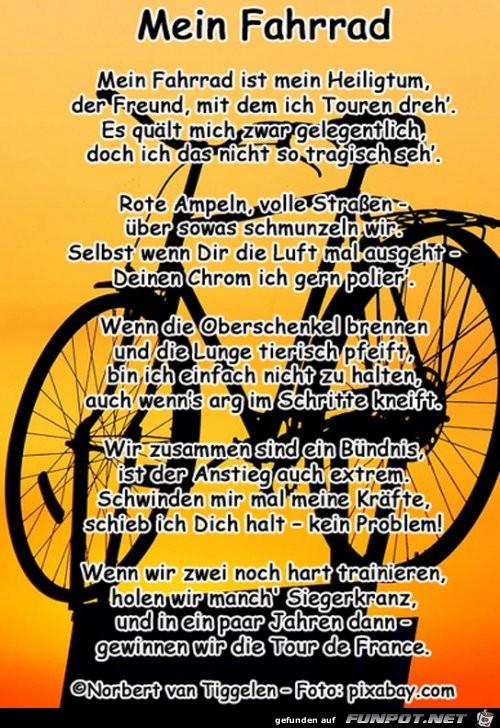 Mein Fahrrad 2019