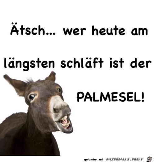 Palmesel