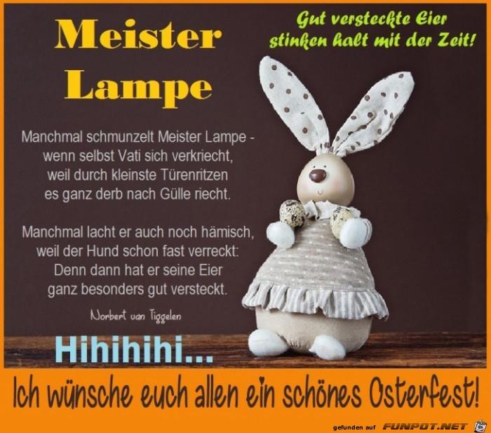 Meister Lampe2 2019