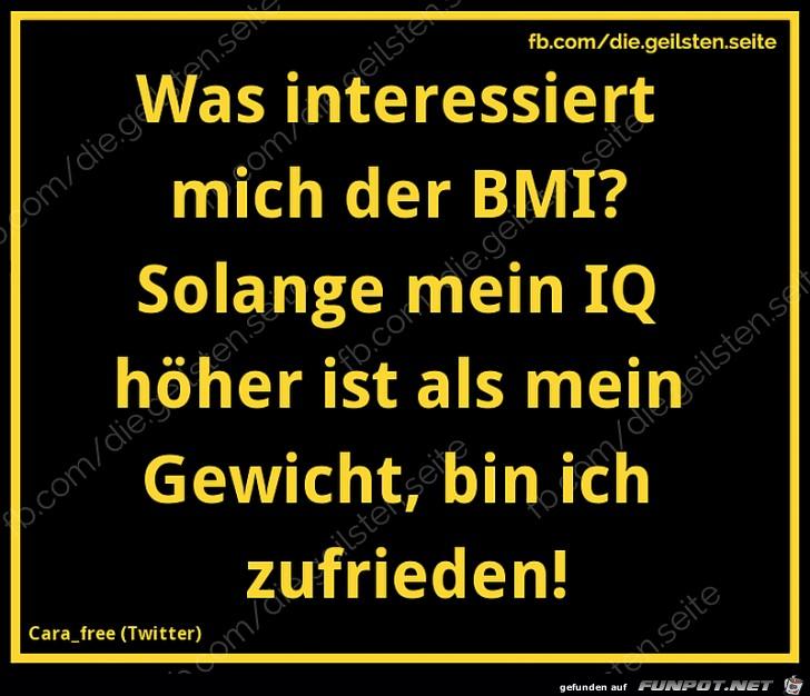 Unterschied BMI zu IQ