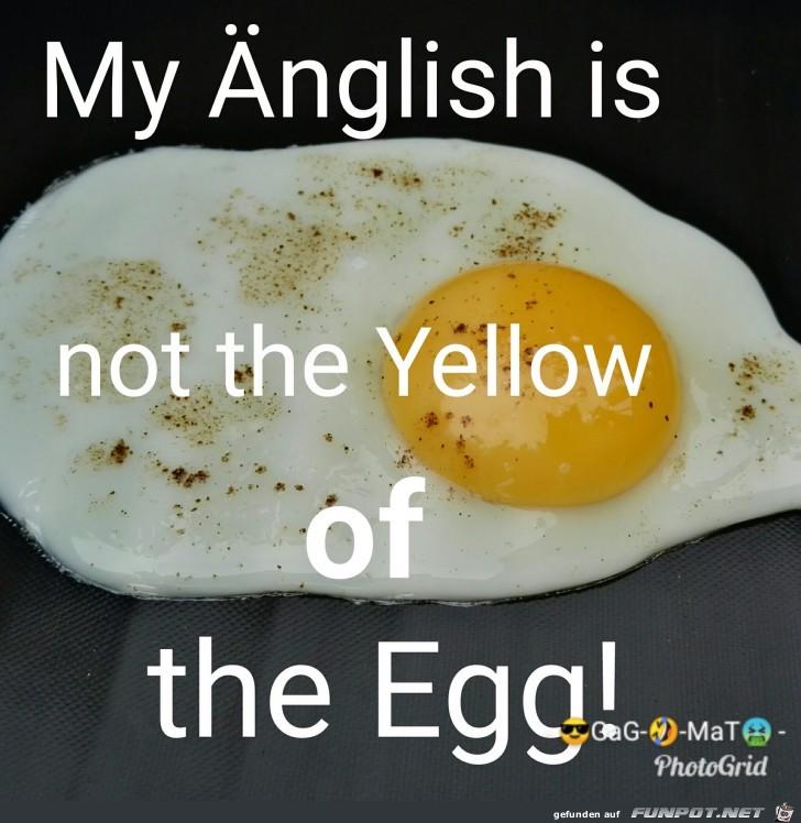 Englisch-Kenntnisse