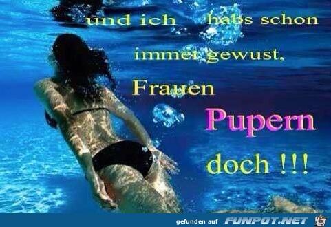 Der-Beweis.jpg auf www.funpot.net