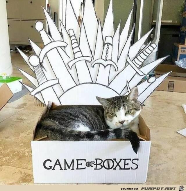 Meine Box