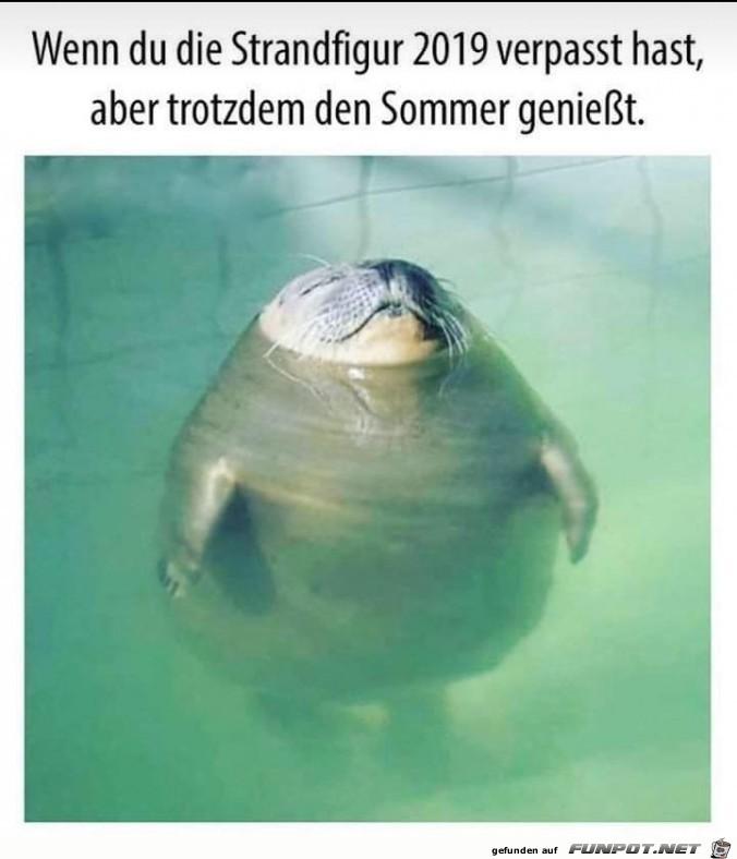 Sommer-genießen.jpg auf www.funpot.net