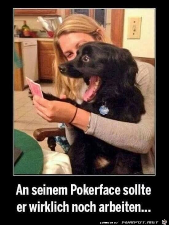 an seinem pokerface
