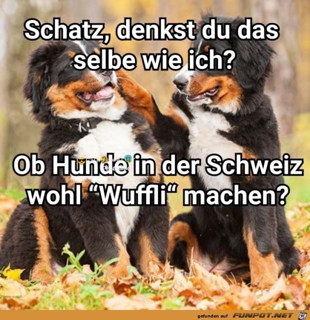 Wuffli