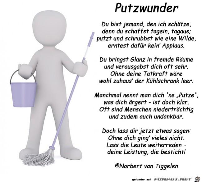 Putzwunder 2019