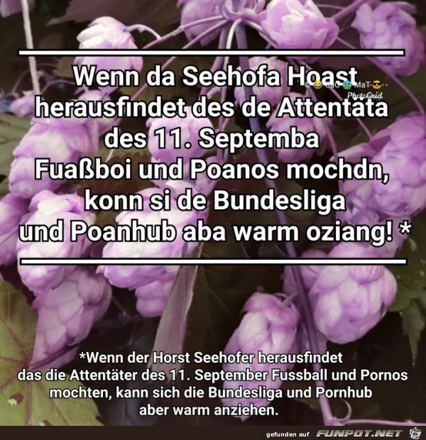 Seehofa Hoast