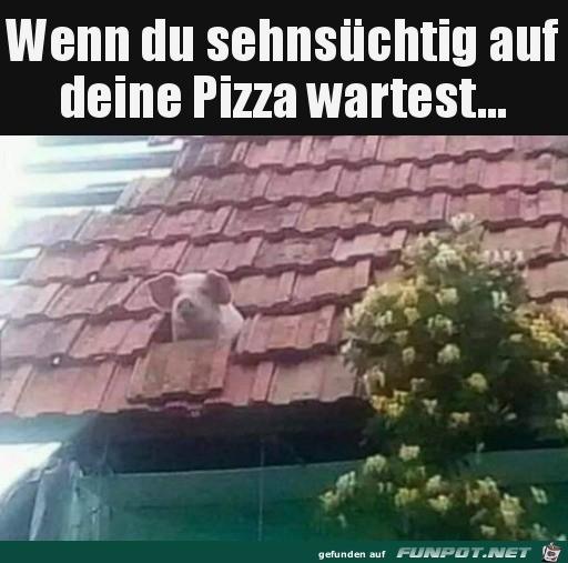 Wann kommt die Pizza