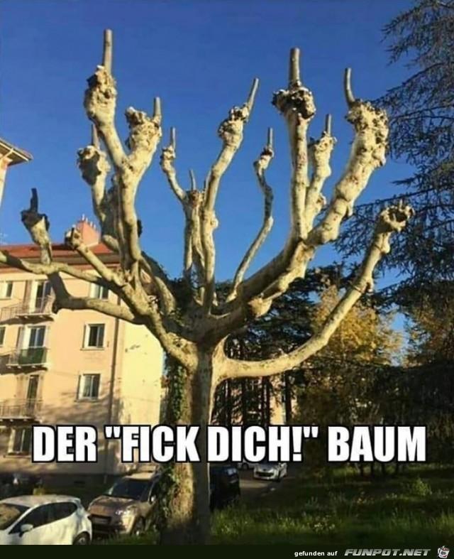 Lustiger Baum