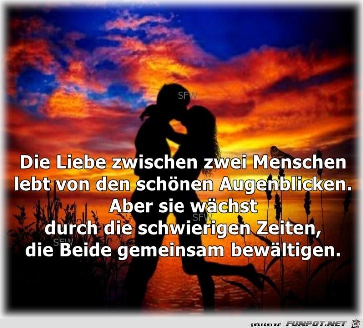 Die Liebe zwischen zwei Menschen2 1