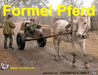 Formel Pferd