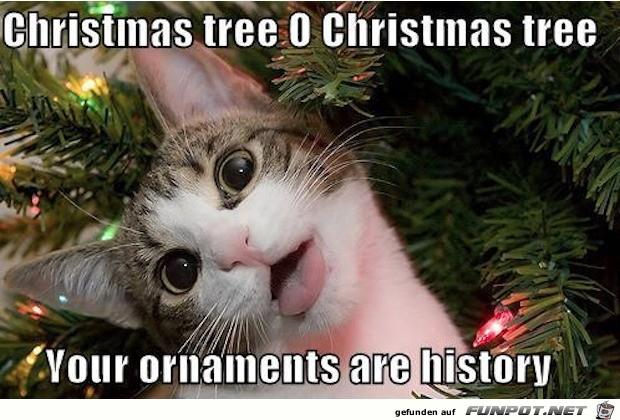 Der Weihnachtsschmuck ist Geschichte