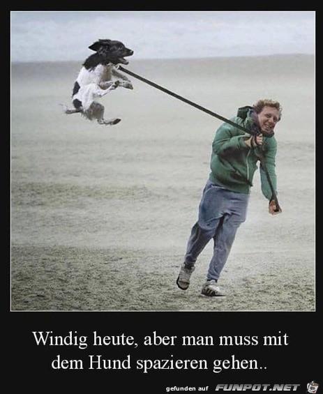 Ziemlich windig