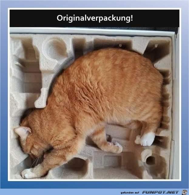 Originalverpackung
