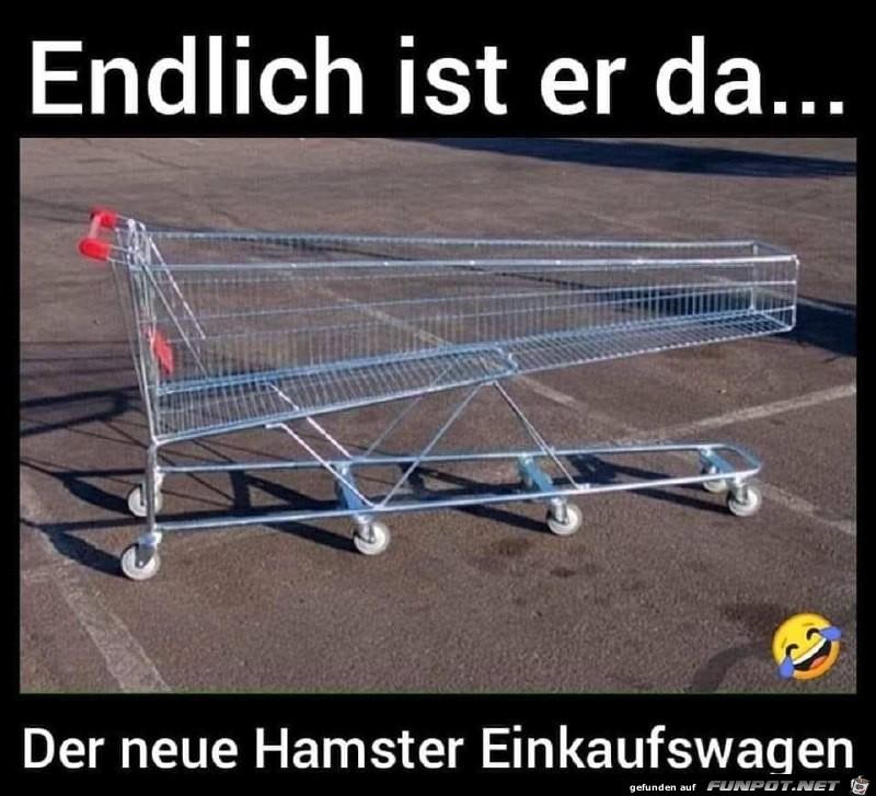 Endlich ist der Hamster-Einkaufswagen da
