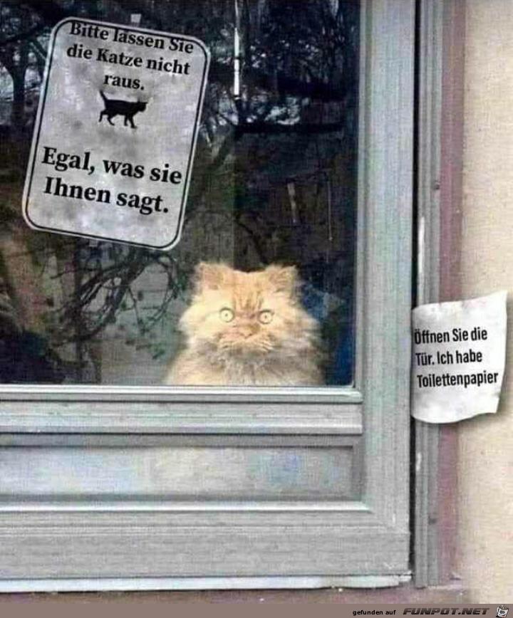 Bitte die Katze nicht rauslassen