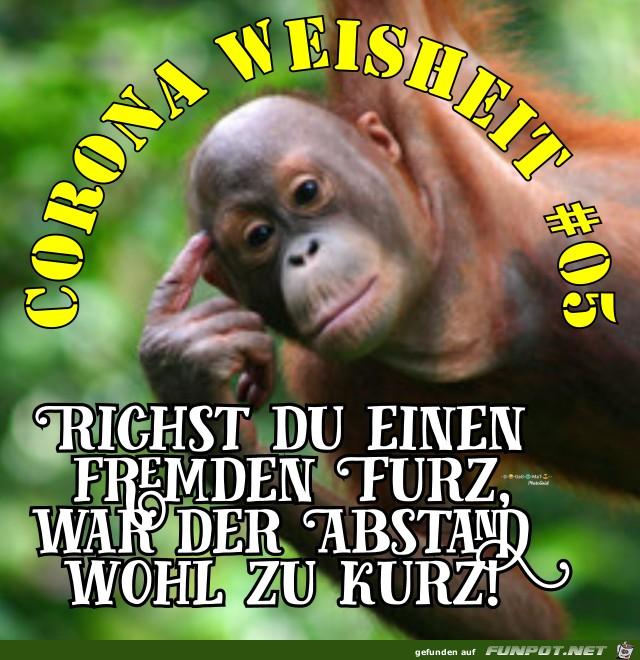 Corona Weisheit