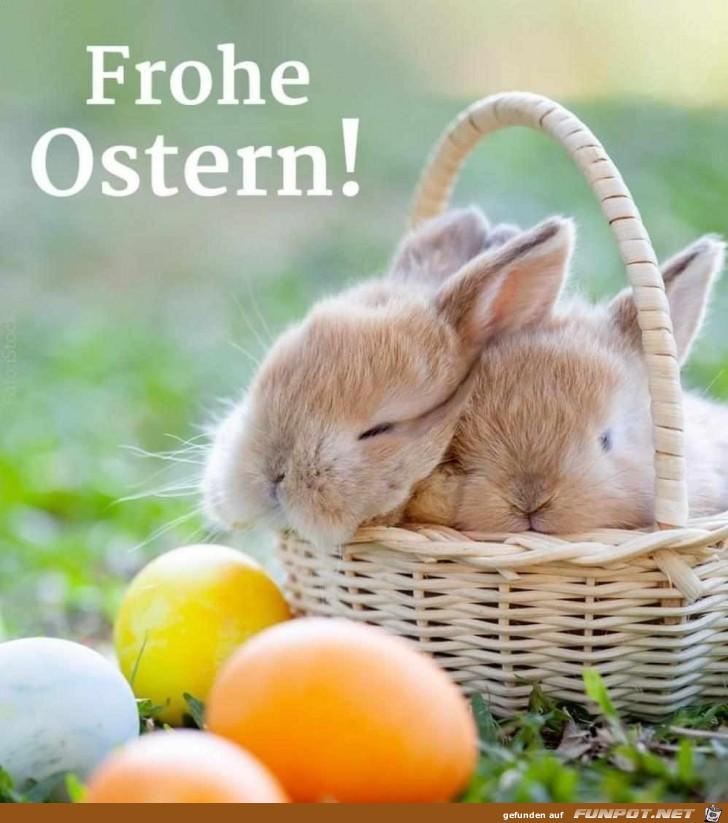 die Häschen wünschen frohe Ostern