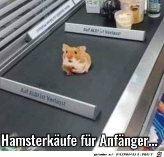 Hamsterkaeufe_fuer_Anfaenger.jpg