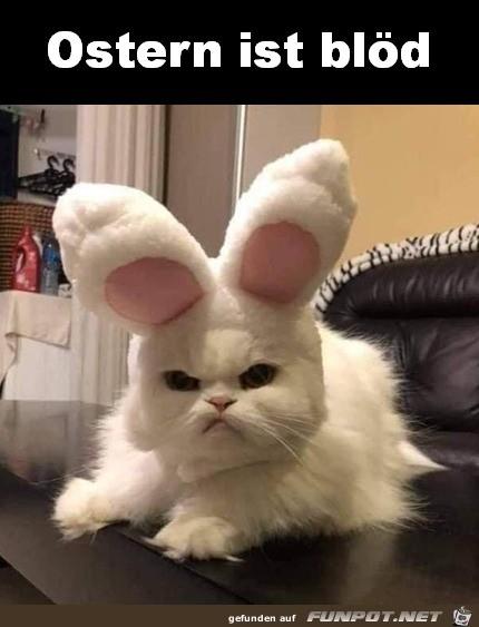 Ostern ist blöd