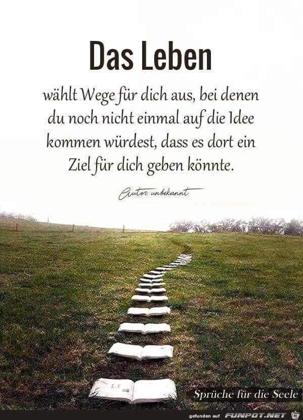 Das Leben wählt Wege für dich aus