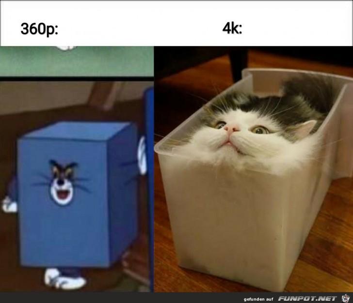 Lustiger Vergleich