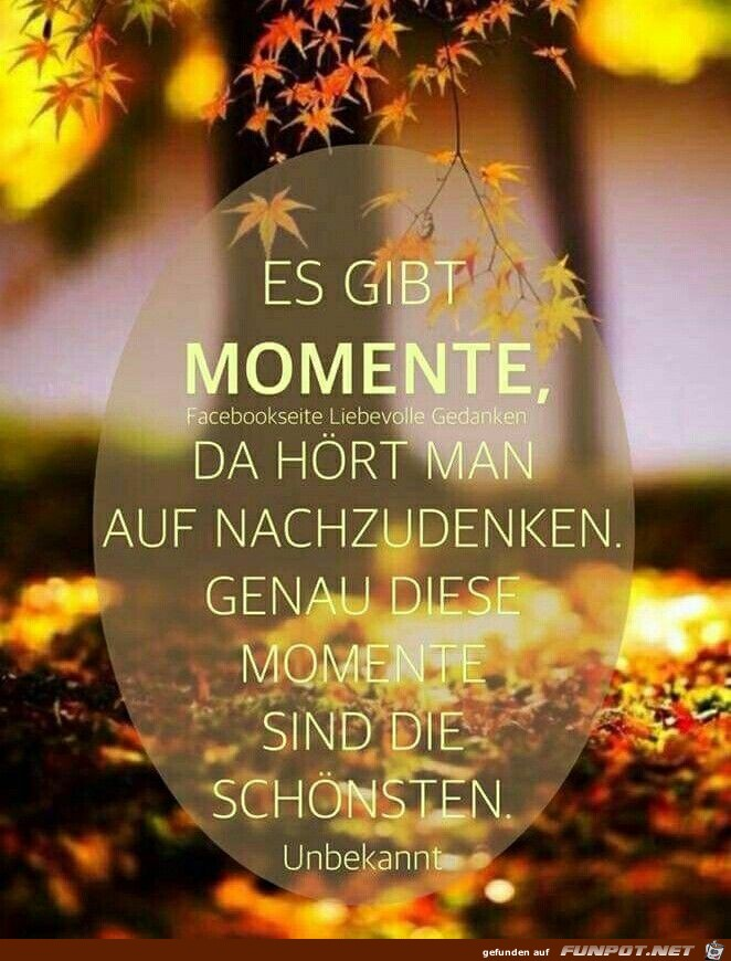 Es gibt Momente