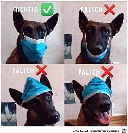 So-trägt-man-eine-Maske-richtig.jpg auf www.funpot.net