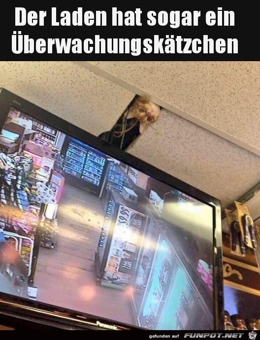 Tierische Überwachungskamera