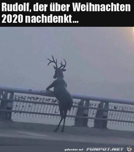 Rudolf denkt über Weihnachten nach