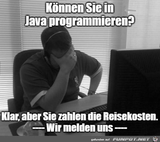 Können Sie in Java programmieren...