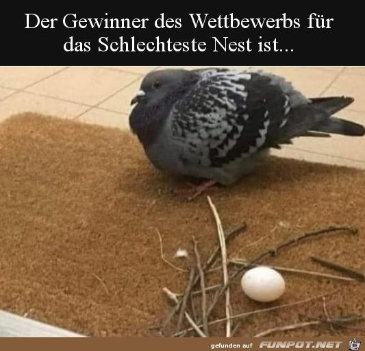 Nest für Faule