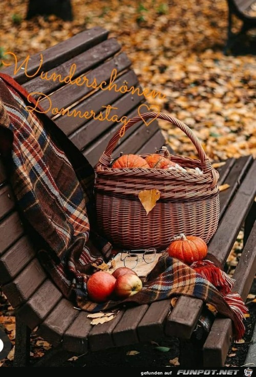 Herbst Donnerstag