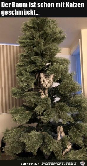 Baum mit Katzen geschmückt