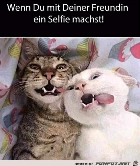 Lustiges Selfie