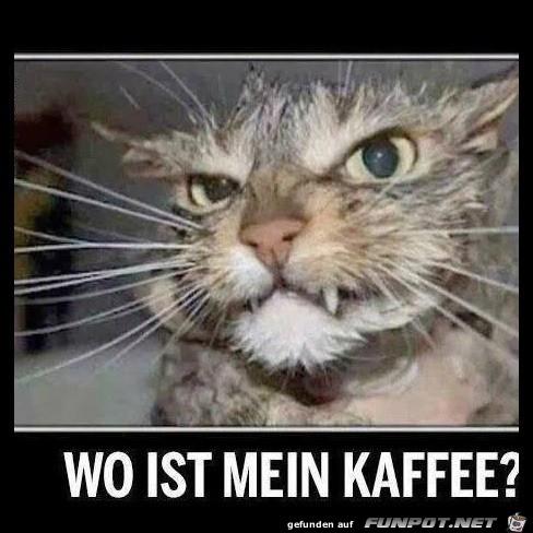 Wo ist der Kaffee?