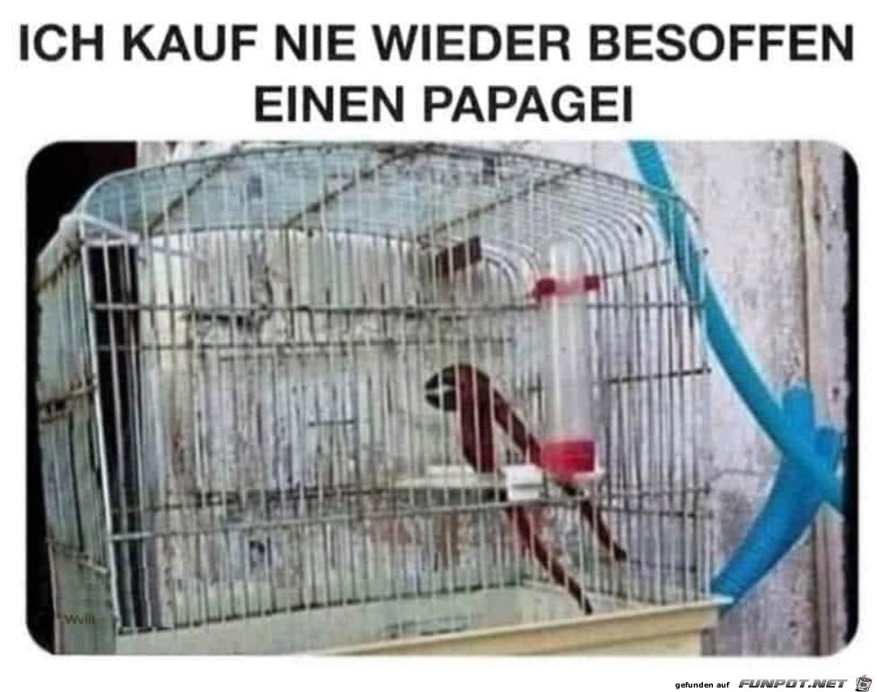 Super Papagei