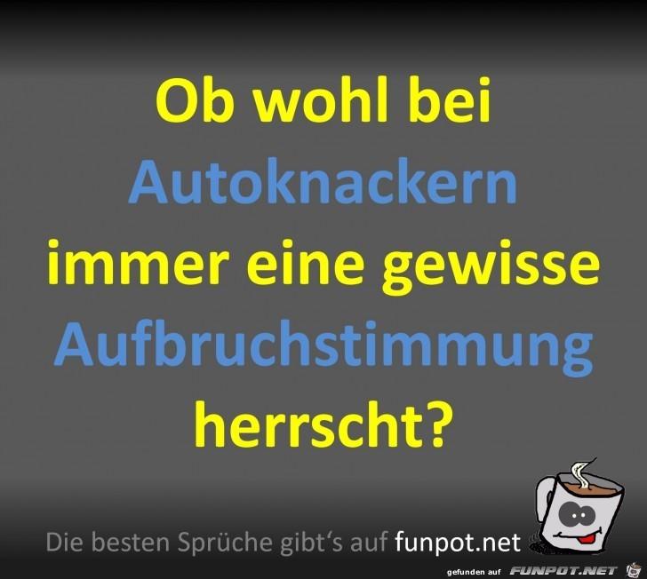 Autoknacker