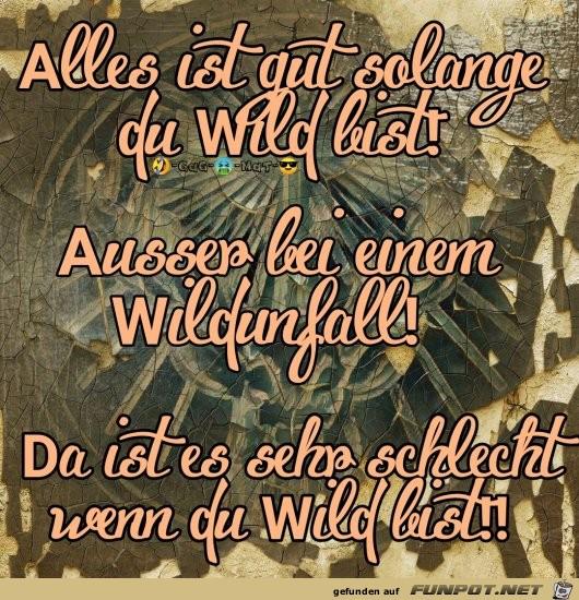 Sei Wild