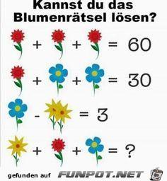 Kannst du das Blumenrätsel lösen ?