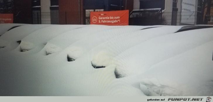 Überraschung am Morgen. Finde ich das passende Auto?