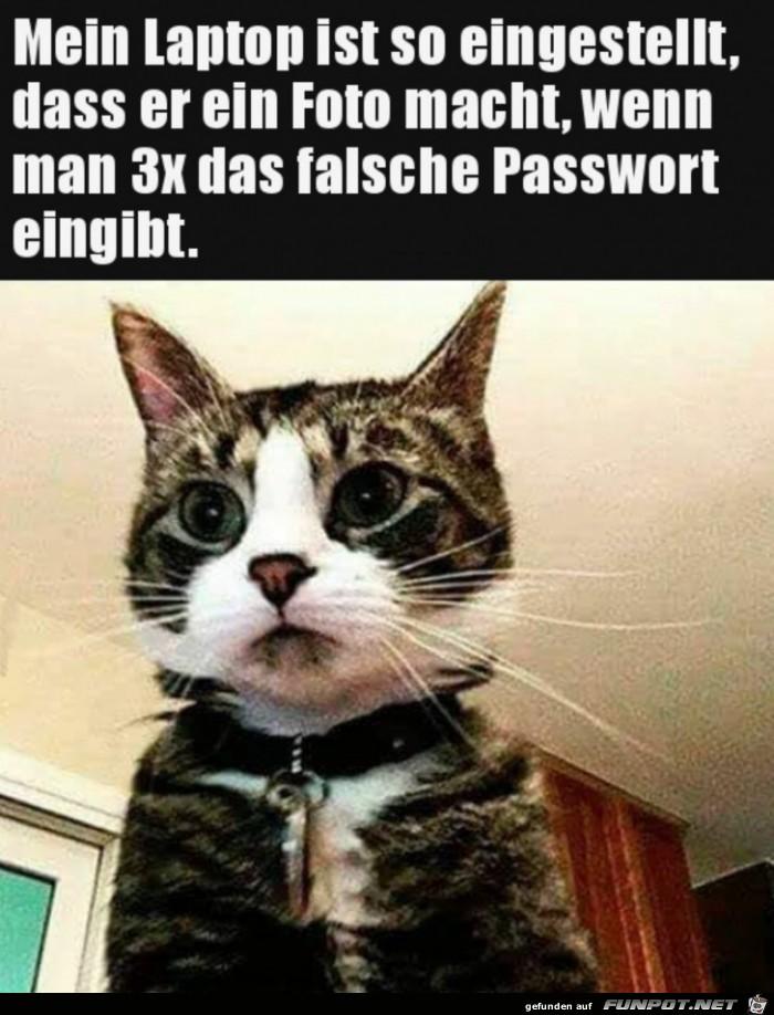 Ups, Passwort falsch eingegeben