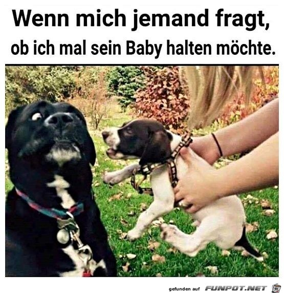 Willst du mein Baby halten?