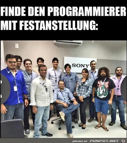 Programmierer mit Festanstellung