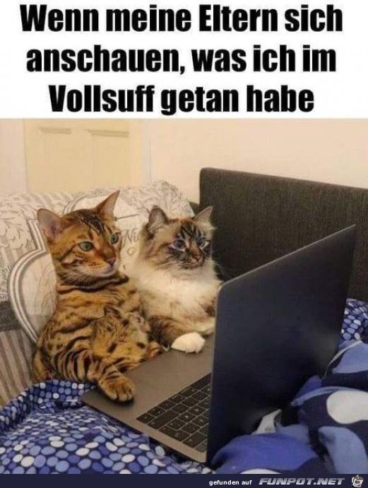 Wenn-meine-Eltern-in-den-Laptop-gucken.jpg auf www.funpot.net